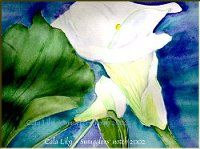 Cala Lily- Watercolor by Lily Azerad-Goldman