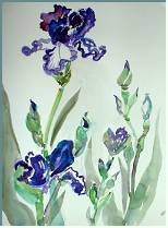 Iris- painting by Lily Azerad-Goldman